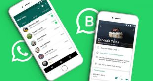 WhatsApp Business Kini Tersedia Untuk iPhone,WhatsApp Business for iPhone, WhatsApp Business iPhone, fitur baru WhatsApp Business iPhone, WhatsApp Business baru untuk iPhone