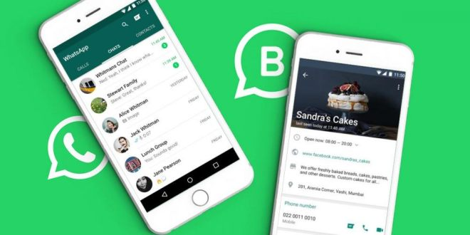 WhatsApp Business Kini Tersedia Untuk iPhone,WhatsApp Business for iPhone, WhatsApp Business iPhone, fitur baru WhatsApp Business iPhone, WhatsApp Business baru untuk iPhone