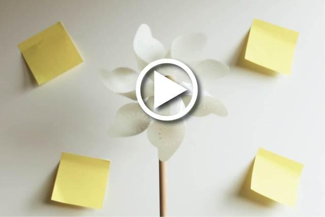 RÉFÉRENCES LE MOT MAGIQUE / vidéos portfolio vidéos institutionnelles vidéos coaching mode et décor