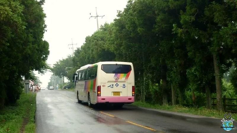 Un pullman che percorre la mysterious road coreana