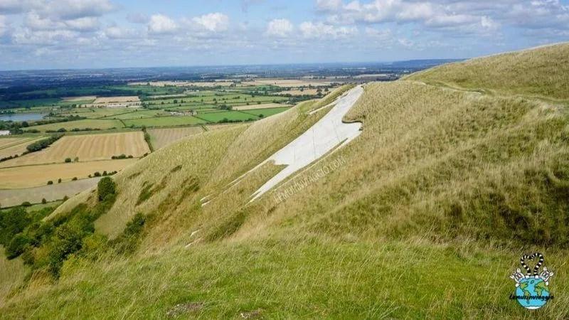 In cima alla collina di Westbury, nel Wiltshire - Inghilterra, si trova uno dei geoglifi più belli a forma di cavallo bianco