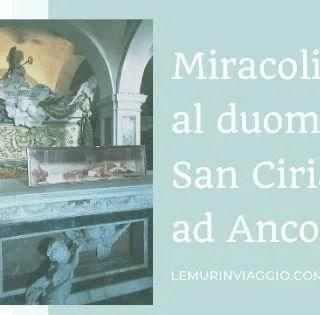 I miracoli al duomo di San Ciriaco