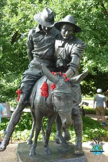 La storia di Jhon Simpson e il suo asino al War Memorial di Canberra