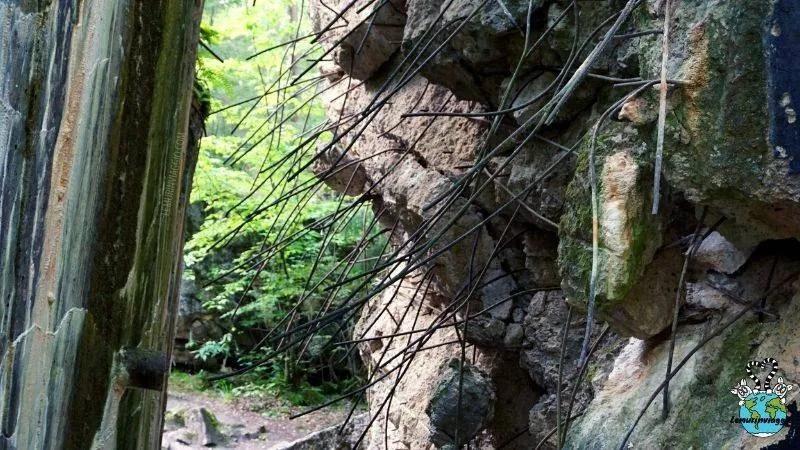 Cavi di acciaio che spuntano fuori dalle rovine come liane