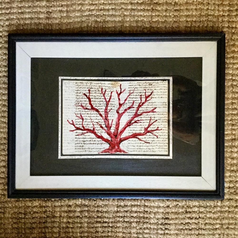 dipinto corallo su pergamena