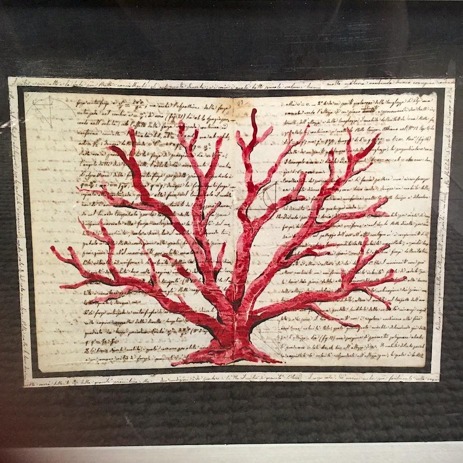 corallo su manoscritto