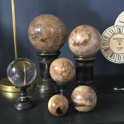 sfere legno pietrificato 5