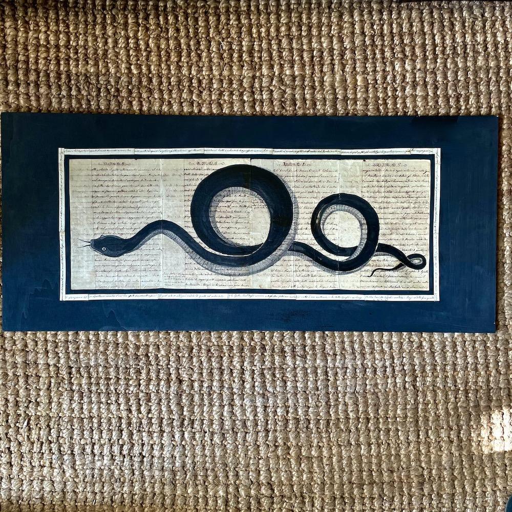 serpente a china su manoscritto
