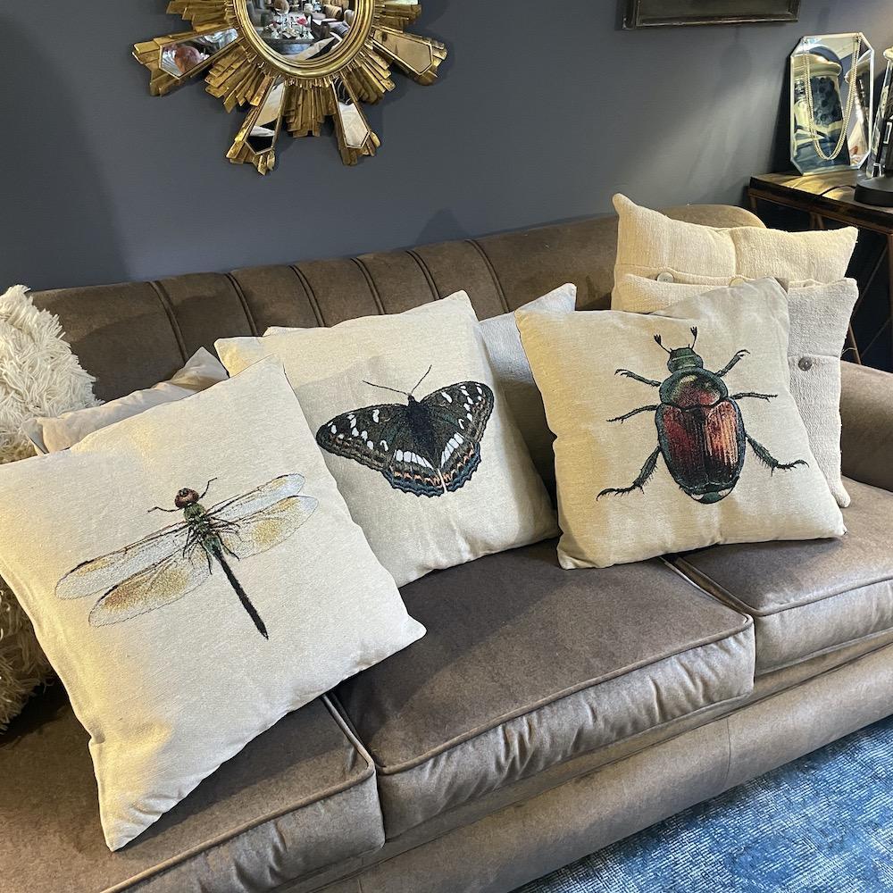 cuscini insetti