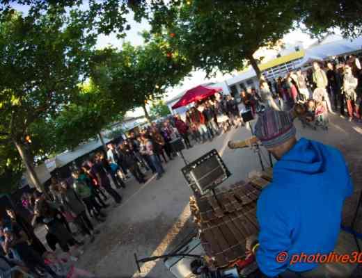 Balaphonic Fête du Pois Chiche 2017 Photolive30