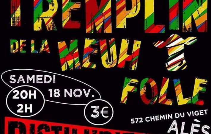 Groupes Festival de la Meuh Folle 2018 Alès