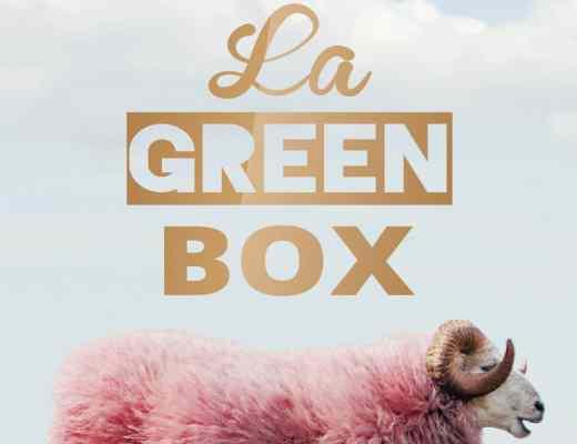 La Green Box Florent Vintrignier La Rue Kétanou nouveau projet