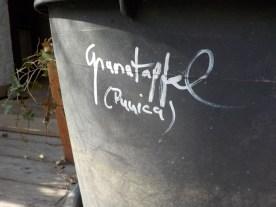 10-klause-granatapfel-punica-topf-gruenerbeton