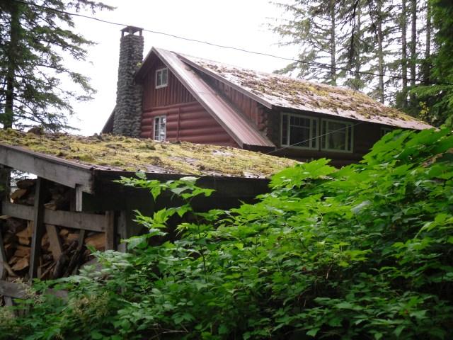 A Log Cabin Building