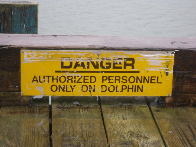 DANGER: AUTHORIZED PERSONNEL ONLY ON DOLPHIN