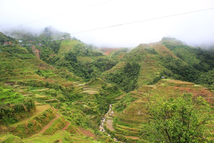 Banaue Rice Fields