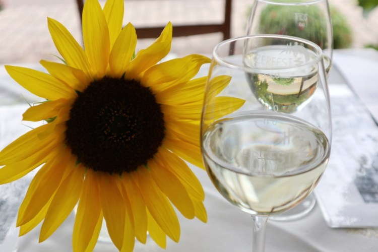 Wine Tasting Naumburg