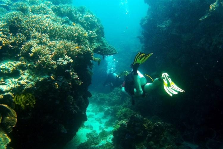 Underwater Canyons