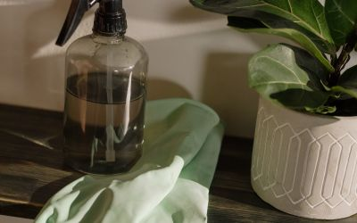 Sustainable Spring Cleaning for Healthy Living
