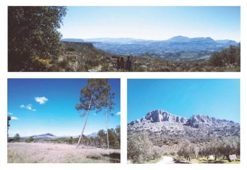 El paisatge