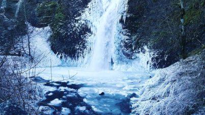 LenaStark.com | Snowbound
