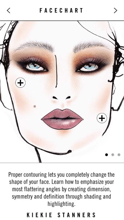 MAC Technique App Face Chart Sculpt and Shade - Lena Talks Beauty