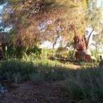 01 Mané, l´initiatrice de la communauté Aquí se celebra la Vida et guérisseuse au Kambô lenaventures