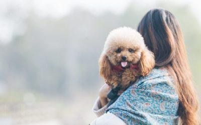 📻 Conocer a nuestra mascota – Lenda en Radio Voz