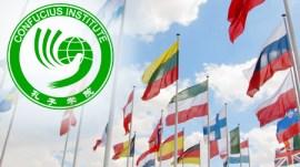 ci_flags