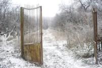 wintergate