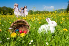 Easter bunny lenews swizerland