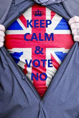 No Vote t shirt