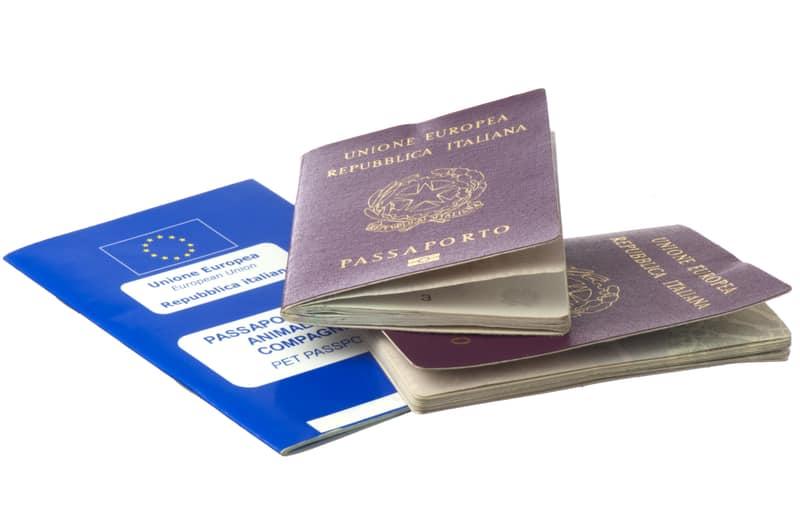 Italian immigration to Switzerland