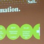 Salt's Swedish CEO quits