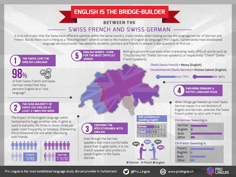 PL Survey Infographic English Infographic-1