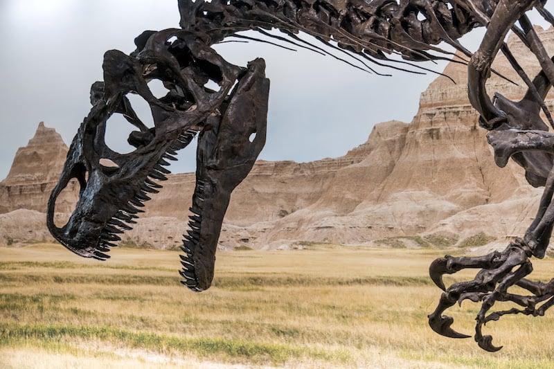 dinosaur_geneva_8