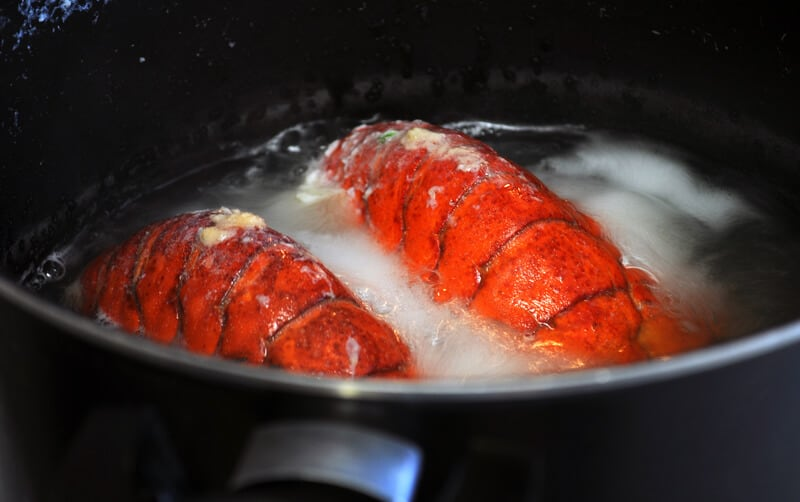 Boiling Live Lobsters Now Illegal in Switzerland