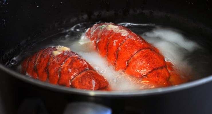Switzerland bans boiling lobsters alive