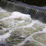 Swiss government raises allowable limits for pesticide residues in waterways
