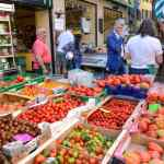 Swiss organic farm output doubles