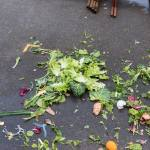 Two thirds of Swiss food waste avoidable