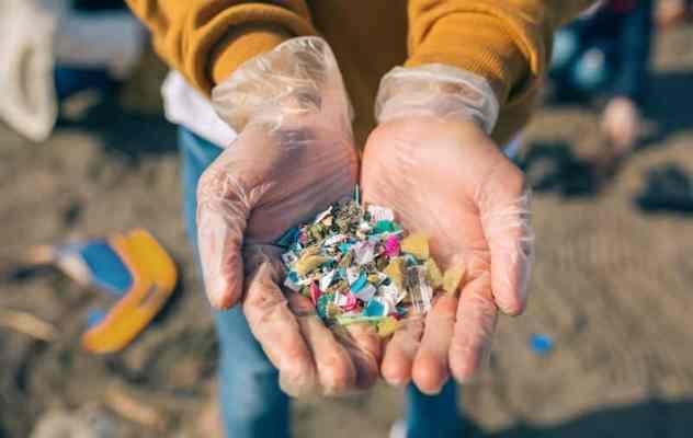 Plastic pollution © David Pereiras Villagra | Dreamstime.com
