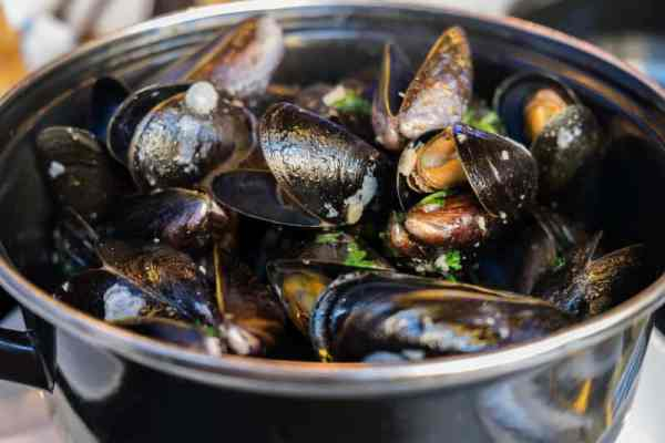 Watch out for norovirus containing shellfish