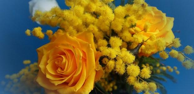 Buona Festa della Donna a tutte le donne, in particolare alle mie amiche e lettrici, con la speranza di benessere per tutte.