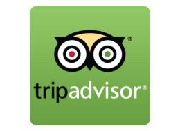 tripadvisor-organizar un viaje.jpg