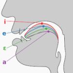 Sistema fonológico del español