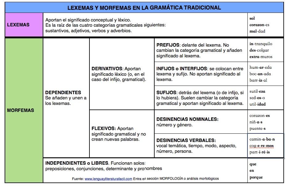 Lexema O Raíz Base Léxica Y Morfemas Lengua Y Literatura