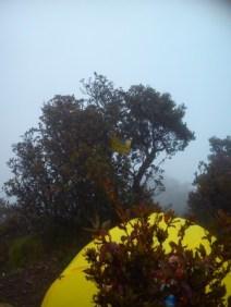 Tenda di puncak