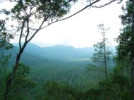 Situ Lembang. Can U See That?