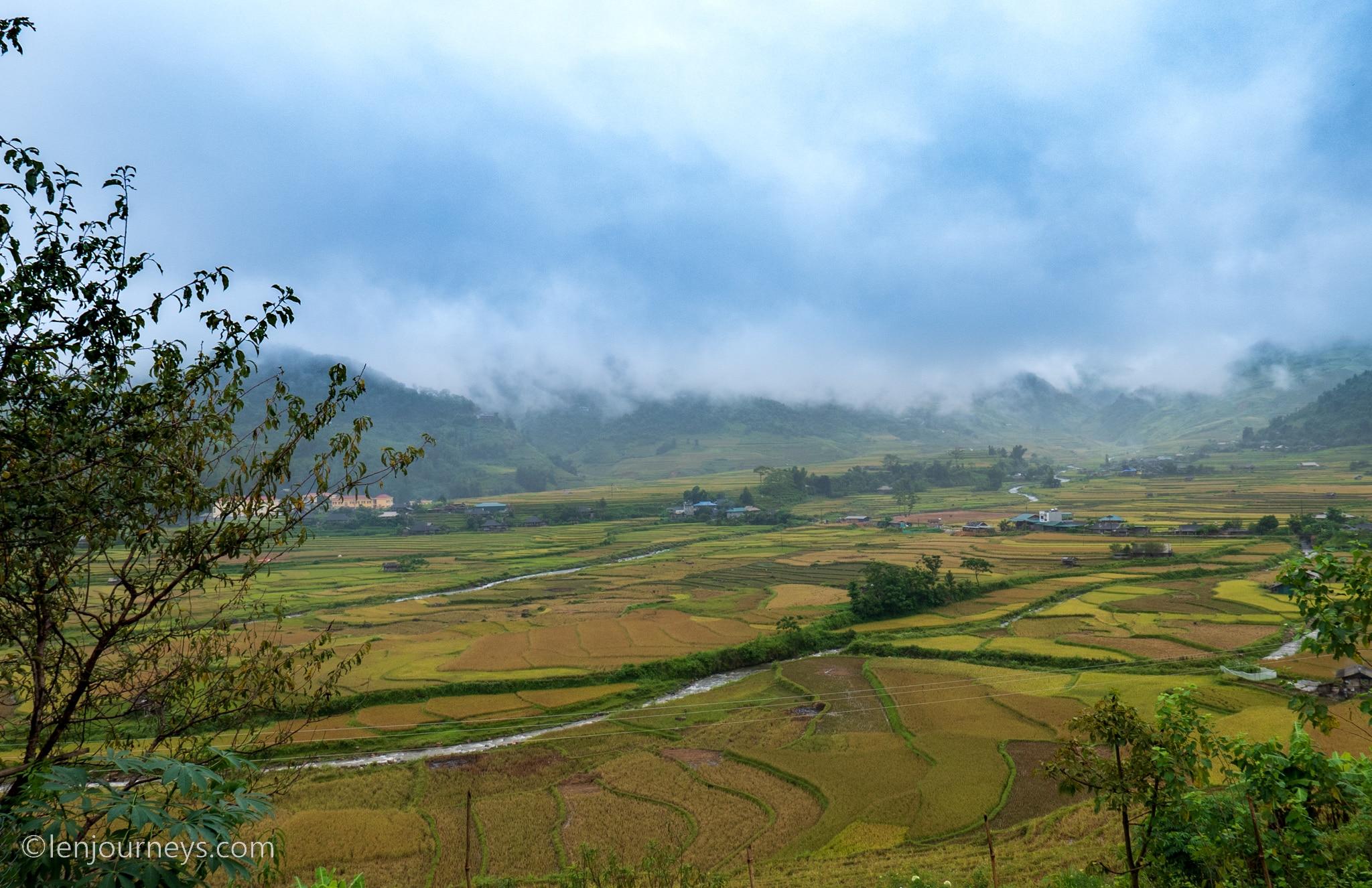 Rice paddies in Tu Le Valley